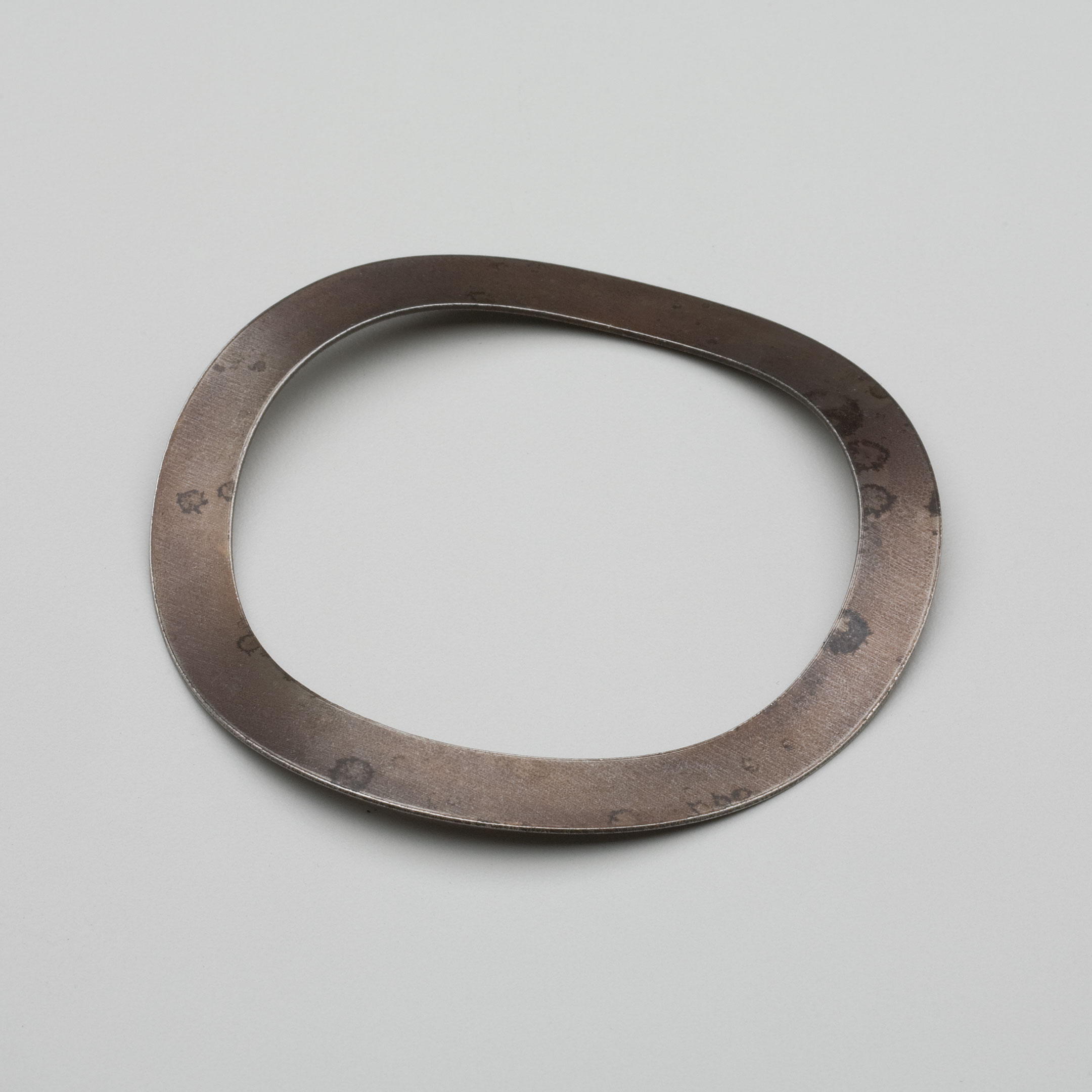 Bearing Spring Washers